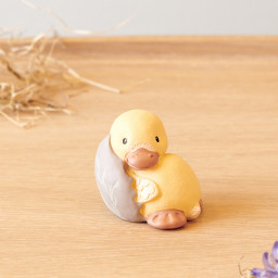 Duckling Ralle